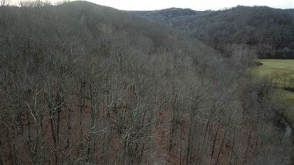 Lots And Land for sale in 123 Enoch Run, Le Roy, WV, 25252