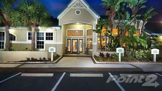 Apartment for rent in The District at Clearwater - A1-ONE BEDROOM, Clearwater, FL, 33759