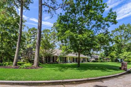 Residential Property for sale in 1110 Doral Lane, Houston, TX, 77073