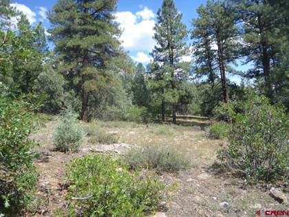 Lots And Land for sale in 577 Ginger Circle, Pagosa Springs, CO, 81147