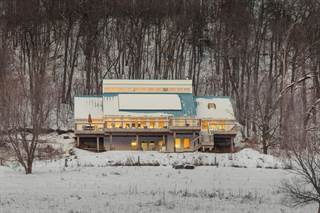 Single Family for sale in W9114 Plum Valley Road, Pepin, WI, 54759