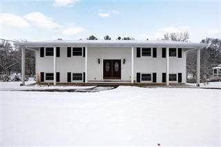 Single Family for sale in 14717 Willow Brook Drive, Lake Odessa, MI, 48849