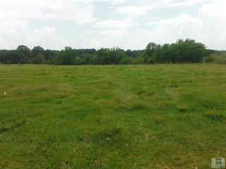 Land for sale in 01 Barker Rd., Pelahatchie, MS, 39145