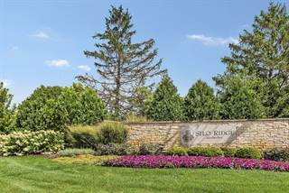 Land for sale in Lot # 65 South Silo Ridge Road, Orland Park, IL, 60467