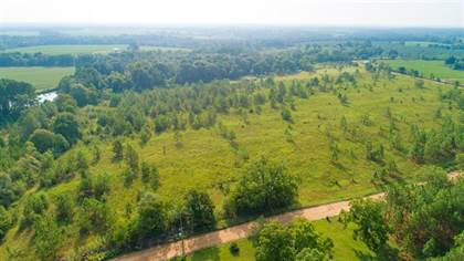 Lots And Land for sale in Lot 3 Giddens Road, Ashburn, GA, 31714