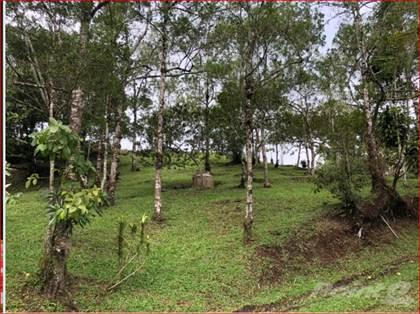 Farm And Ranch for sale in 11.25 Acre Farm In La Paz, San Ramon, Alajuela