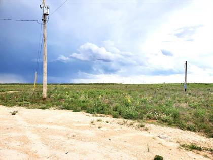 Lots And Land for sale in 694 PR 303-F, Seminole, TX, 79360