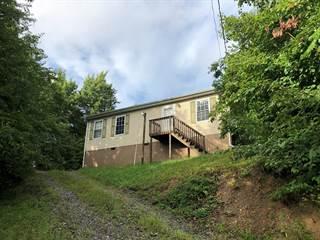 Single Family for sale in 120 OGDEN STREET, Mt. Hope, WV, 25880