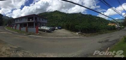 Multifamily for sale in Bo. Caricaboa, Jayuya PR, Jayuya, PR, 00664
