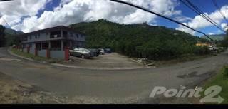 Multi-family Home for sale in Bo. Caricaboa, Jayuya PR, Jayuya, PR, 00664