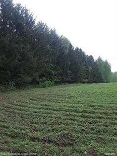 Lots And Land for sale in 4537 N WHEELER, Snover, MI, 48472