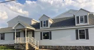 Single Family for sale in 215 E OLIVE Street, Bridgeport, WV, 26330