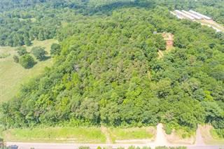 Land for sale in 890 Pocket Road, Pendergrass, GA, 30567