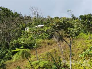 Other Real Estate for sale in Bo. Guavate Carr #179  km.19 hm 7, Cayey, Antrim, MI, 48414