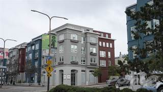 Apartment for rent in Hillside Village - 3X2, Berkeley, CA, 94709