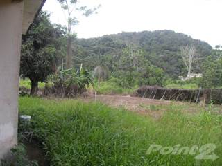 Farm And Agriculture for sale in Humacao, Humacao, PR, 00791