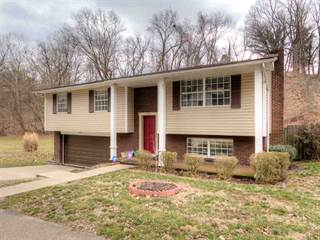 Single Family for sale in 791 Roby Road, Huntington, WV, 25705