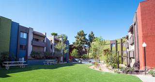 Apartment for rent in Midtown on Main Street, Mesa, AZ, 85201