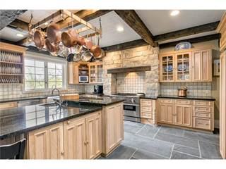 Single Family for sale in 46780 TIMBERLANE Street, Northville, MI, 48167