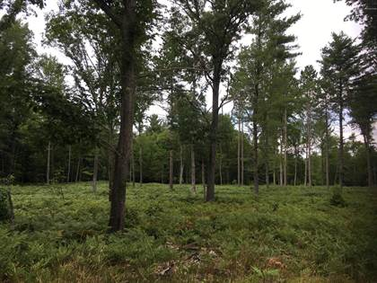 Lots And Land for sale in Peters Farm Road, Irons, MI, 49644