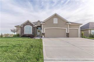 Single Family for sale in 924 NW 94 Street, Kansas City, MO, 64155