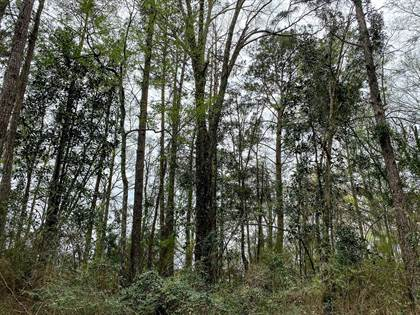 Lots And Land for sale in 0 MS-598, Seminary, MS, 39479