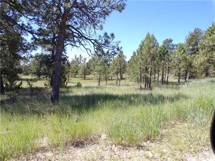 Residential Property for sale in 1 Springfield Trail, Roundup, MT, 59072