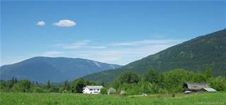 Farm And Agriculture for sale in 4400 10 Avenue, NE, Salmon Arm, British Columbia