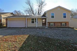 Single Family for sale in 1207 Amberglen, Saint Peters, MO, 63376