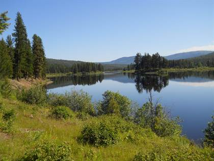 Lots And Land for sale in Nhn Island Lake Road, Libby, MT, 59923