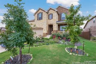 Single Family for sale in 31987 Cast Iron Cove, Bulverde, TX, 78163