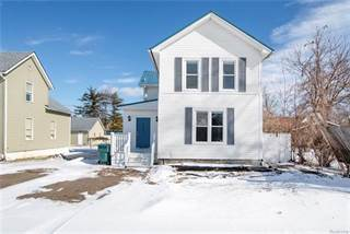 Single Family for sale in 119 COLLINS ST, Fowlerville, MI, 48836