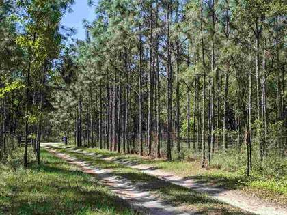 Farm And Agriculture for sale in 000 SW 88th, Newberry, FL, 32669