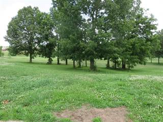 Land for sale in 104 Niblick Court Lot 47, Republic, MO, 65738