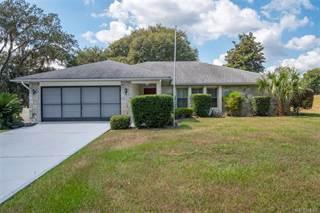 Single Family for sale in 1148 N Foxrun Terrace, Inverness, FL, 34453
