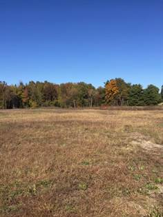 Lots And Land for sale in 00  ANTON ROAD, Madisonville, KY, 42431