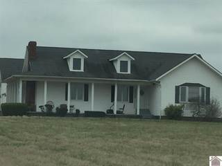 Single Family for sale in 1339 V F W Road, Barlow, KY, 42024