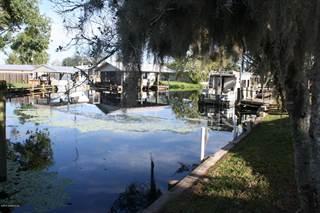 Residential Property for sale in 45 SCOTT, Welaka, FL, 32193
