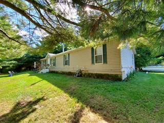 Single Family for sale in 9059 tessie Court, Bushnell, MI, 48834