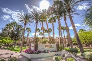 Apartment for rent in Galleria Palms - Bermuda, Tempe, AZ, 85282