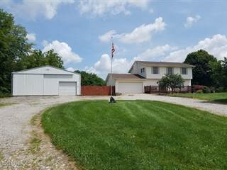 Single Family for sale in 7016 Hobbes Road, Woodlawn, IL, 62898