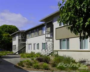Apartment for rent in Olivewood, Sunnyvale, CA, 94085