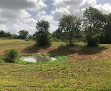 Lots And Land for sale in 6005 Langhorn Road, Chappell Hill, TX, 77426