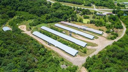Farm And Agriculture for sale in TBD Hwy 59, Sulphur Springs, AR, 72768
