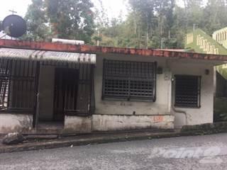 Residential Property for sale in BARRIO PALOMAS SECTOR LA LOMA- COMERIO  (REPO), Beatriz, PR, 00736