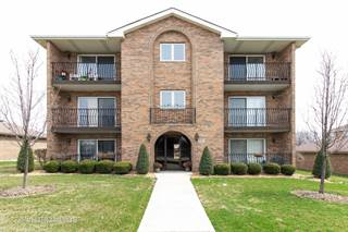 Condo for sale in 15255 West Avenue 3N, Orland Park, IL, 60462