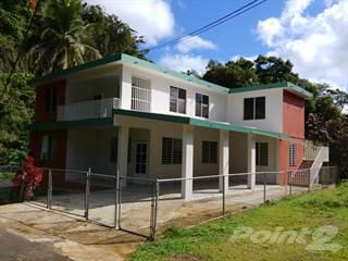 Residential Property for rent in Bo Quebrada 1er Nivel, Barceloneta, PR, 00617