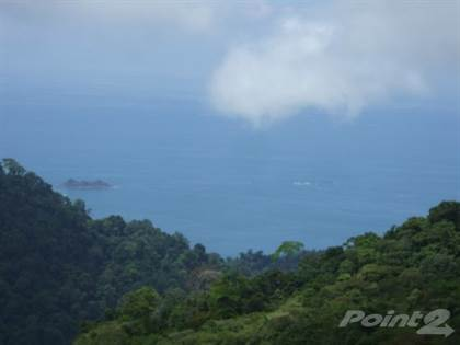 Farm And Agriculture for sale in 83 ACRES – Ocean View Farm With Mix Of Pasture And Jungle And 2 Natural Springs!!!, Uvita, Puntarenas