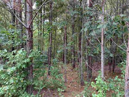 Lots And Land for sale in 0 STARKS RD, Louisville, MS, 39339