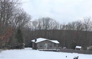 Single Family for sale in 247  Thunderbird Ter Ter, Stroudsburg, PA, 18360